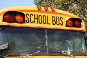 bus-1450027