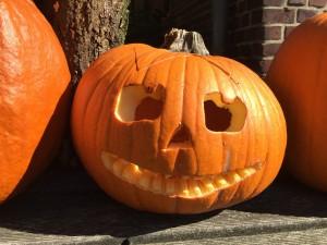 pumpkin-1423469_1280