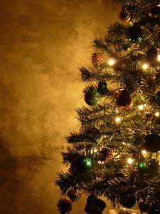 colorado springs christmas tree and holiday junk removal