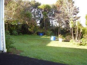 Backyard_Scene_(9734583372)