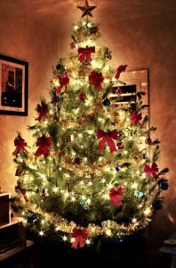 glowing-christmas-tree-1182733