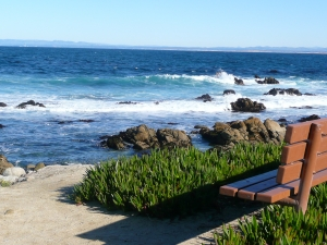 bench-at-the-beach-1255870-m
