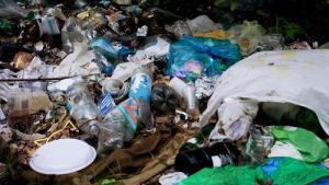 Toxic Waste Disposal