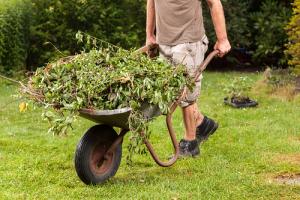 man removing garden waste in wheel barrow