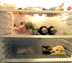 in-the-refrigerator-184175-m