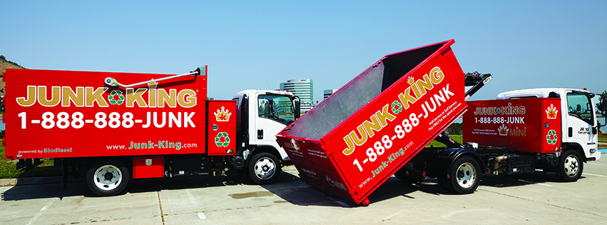 dumpster vs junk removal service