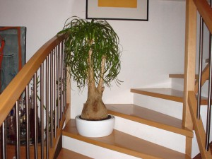 art-lamps-staircase-1-1470627