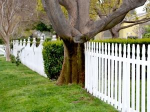 fence-series-8-1416428-m