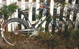 bike-1448825
