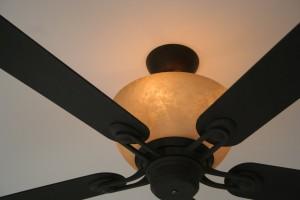 fan-light-1-1225437